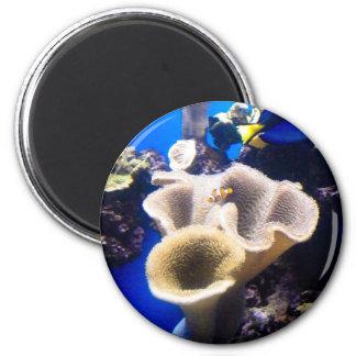 Finden von nemo runder magnet 5,7 cm