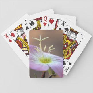 Fink-Blumenstaubgefässe Spielkarten