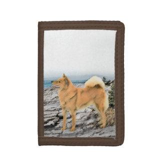 Finnischer Spitz an der Küste-Malerei - Hundekunst