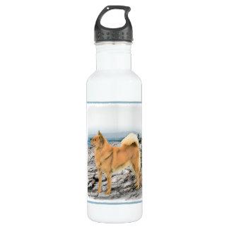 Finnischer Spitz an der Küste Trinkflasche
