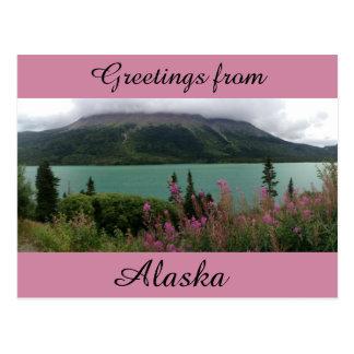 Fireweed-Raserei Postkarte