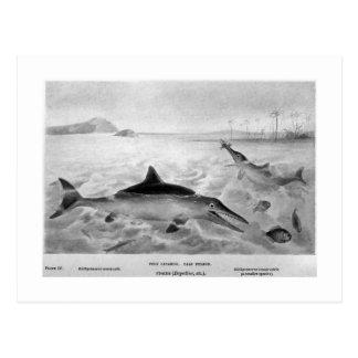 Fisch-Eidechsenkunstpostkarte Postkarte
