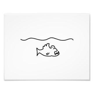 fisch meer wasser sprung fotodruck
