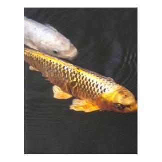 Fische Asiens Koi 21,6 X 27,9 Cm Flyer