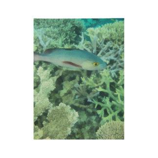 Fische, die das Riff durchstreifen Holzposter