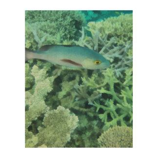 Fische, die das Riff durchstreifen Holzwanddeko