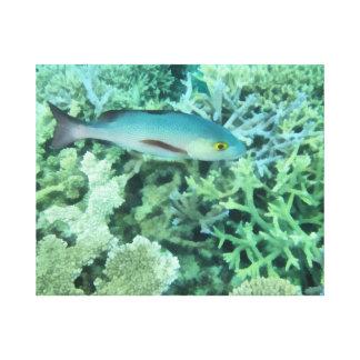 Fische, die das Riff durchstreifen Leinwanddruck