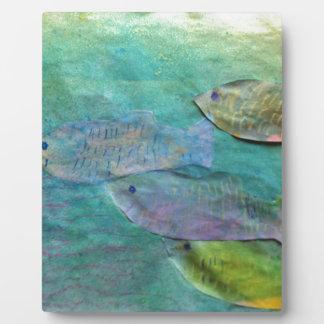 Fische, die ungefähr schwimmen fotoplatte