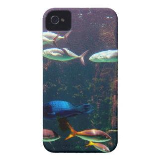 Fische im Aquarium iPhone 4 Cover