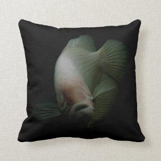 Fische im Behälter-Porträt Kissen