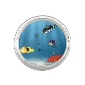 Fische im Ozean Foto Ringe