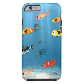Fische im Ozean Tough iPhone 6 Hülle