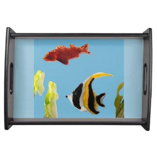 Fische in der Seewasserkunst Tablett