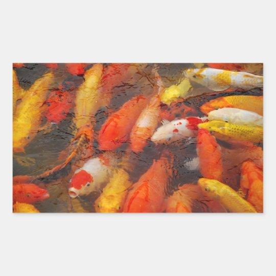 Fische Rechteckiger Aufkleber