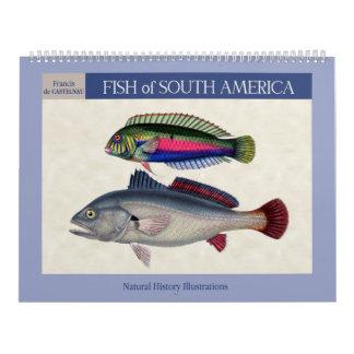 Fische von Südamerika 2018 Kalender