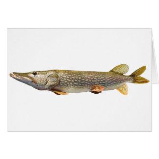 Fischen Pikes Muski Karte