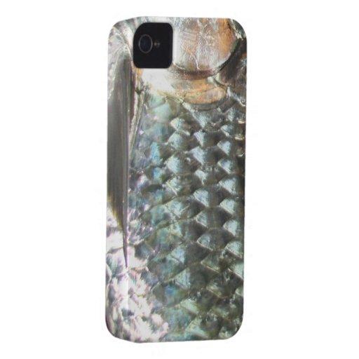 Fischen-Wut iPhone 4/4S Fall (Tarpon) iPhone 4 Hüllen