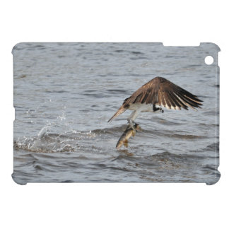 FischenOsprey u. fangen Foto der Tier-3 iPad Mini Hülle