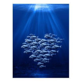 Fischschwarm unter Wasserherzen Postkarten