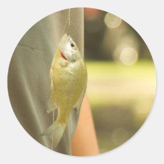 Fishyy Runder Aufkleber