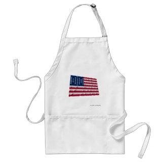Flagge mit 33 Sternen, Fort Sumter Garnisonmuster Schürzen