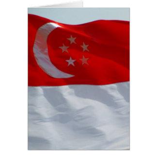 Flagge Singapur Karte
