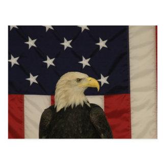 Flagge-und Weißkopfseeadler-Postkarte Postkarte