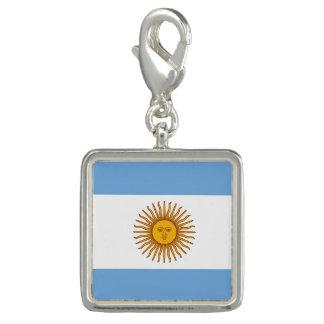 Flagge von Argentinien-Charme Charm