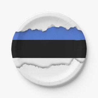 Flagge von Estland Pappteller
