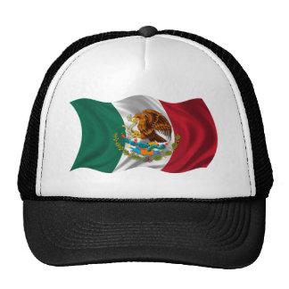 Flagge von Mexiko, Wappen Caps