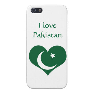 Flagge von Pakistan iPhone 5 Etui