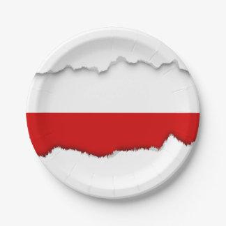 Flagge von Polen Pappteller