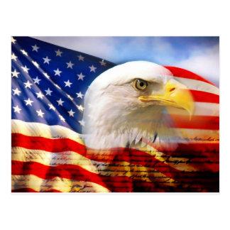 Flagge-Weißkopfseeadler Postkarten