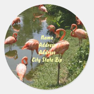 Flamingo-Adressen-Etikett Runder Aufkleber