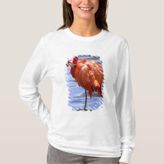 Flamingo auf einem Bein im Wasser T-Shirt