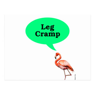 Flamingo-Bein-Klammer Postkarte