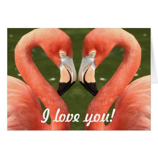 Flamingo - I love you! Karte
