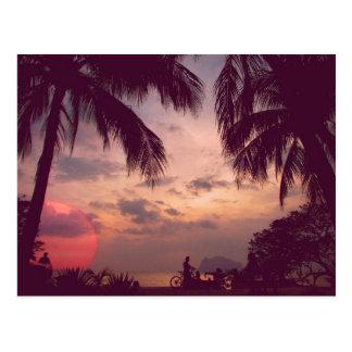 Flamingo-Paradies Costa Ricas Playa gefunden Postkarte