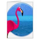 Flamingo-Strand Karte
