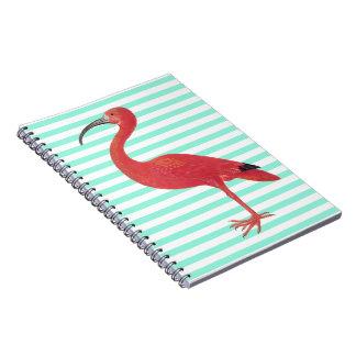 Flamingo u. aquamarine Streifen - feine Spiral Notizblock