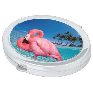 Flamingo und Palmen Schminkspiegel