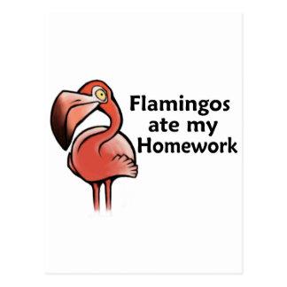 Flamingos aßen meine Hausaufgaben Postkarte