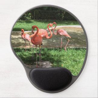 Flamingos auf dem Riviera-Maya in Mexiko Gel Mousepad
