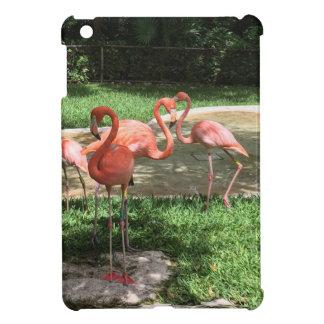 Flamingos auf dem Riviera-Maya in Mexiko iPad Mini Hülle