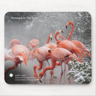 Flamingos Smithsonian | im Schnee Mousepad