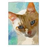 Flammen-Punkt-siamesische Katzen-Gruß-Karten