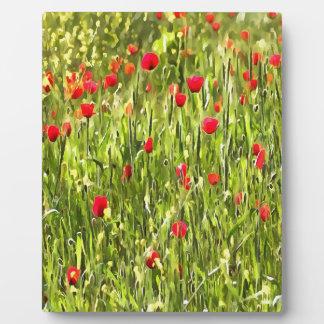 Flandern-Mohnblumen Fotoplatte