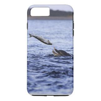 Flaschen-Nasendelphin, der einen großen Lachs isst iPhone 8 Plus/7 Plus Hülle