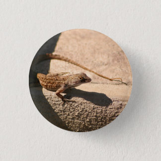 Flatrock Frank-Button Runder Button 2,5 Cm