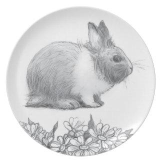 Flaumig das Kaninchen. Bleistiftzeichnung Teller